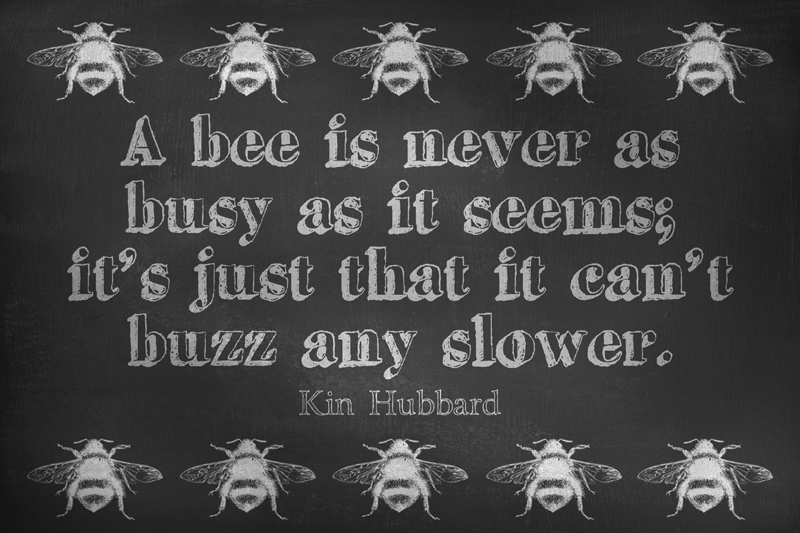 Image result for busy like a bee