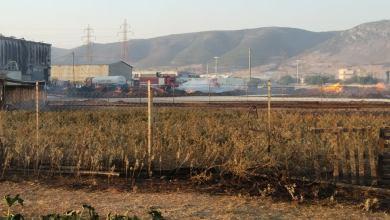 Κλειστό το 4ο Δημοτικό Ασπροπύργου λόγω των αναθυμιάσεων της πυρκαγιάς