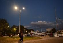 Photo of «Πράσινες» παρεμβάσεις στο παραλιακό μέτωπο Ελευσίνας