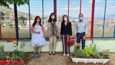 Ασπρόπυργος: Δενδροφύτευση στο 6ο Δημοτικό Σχολείο και Νηπιαγωγείο