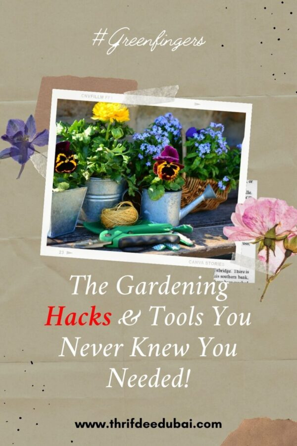 Check out these little gardening hacks that will keep your outdoor space serene & green!