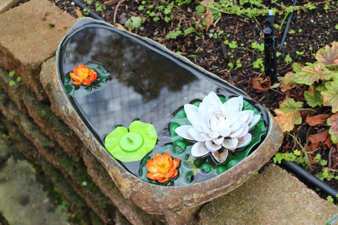 airbnb-pond