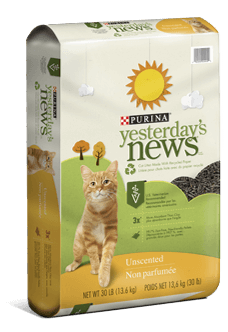 photo regarding Cat Litter Printable Coupons referred to as Yesterdays Information Cat Clutter - BOGO Totally free (Up toward $17
