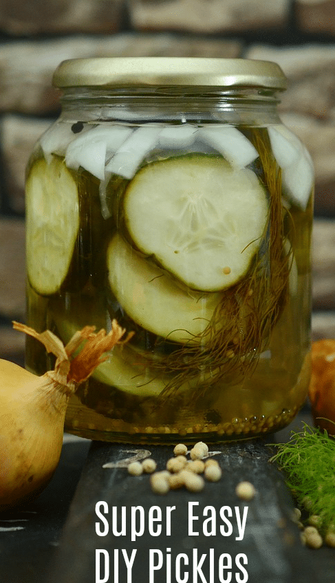 Make Super Easy DIY Pickles using your last empty charge of pickles - save the juice!