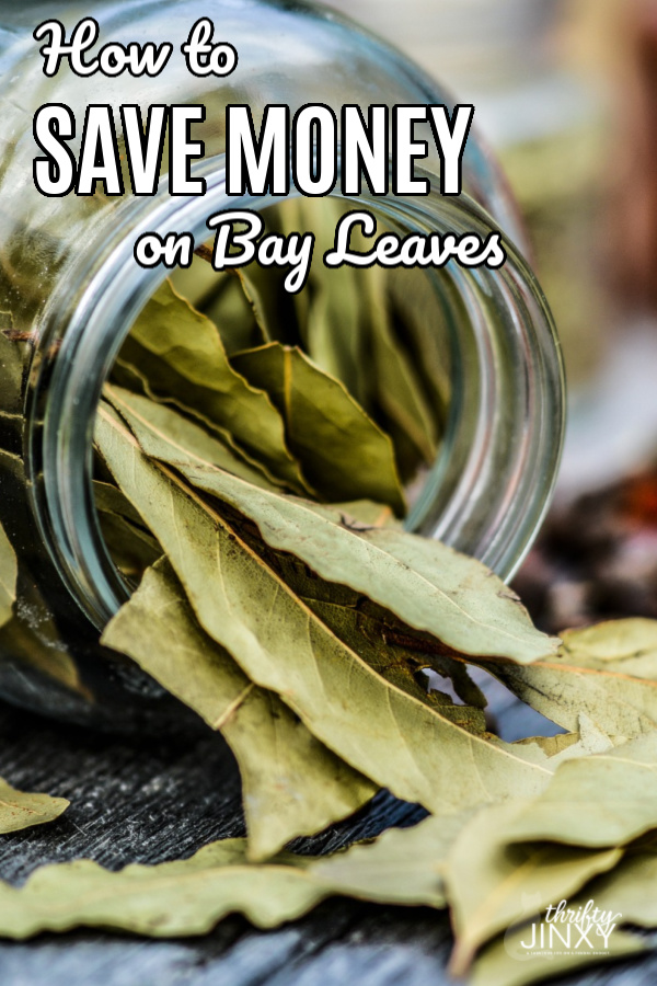 Save Money on Bay Leaves