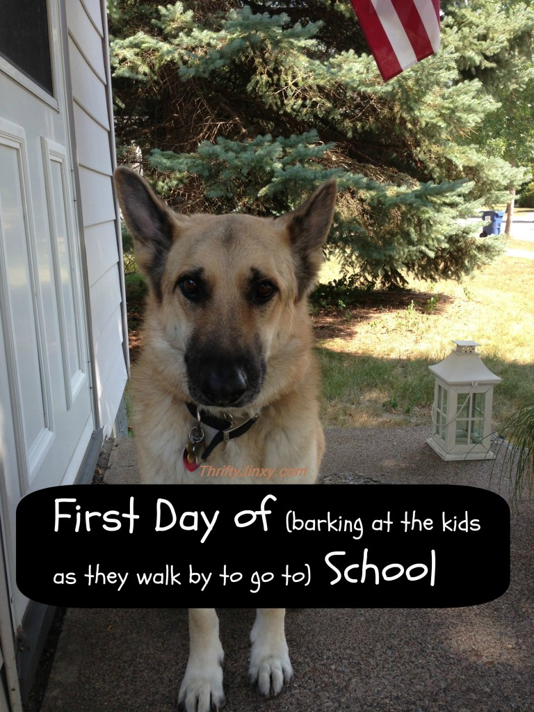Dog First Day of School