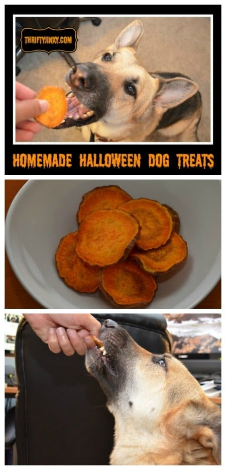 homemade-halloween-dog-treats-recipe
