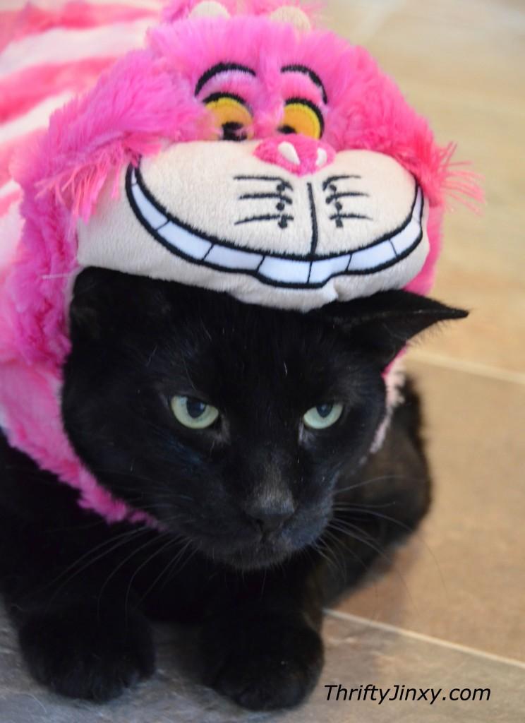 Disney Cheshire Cat Pet Costume