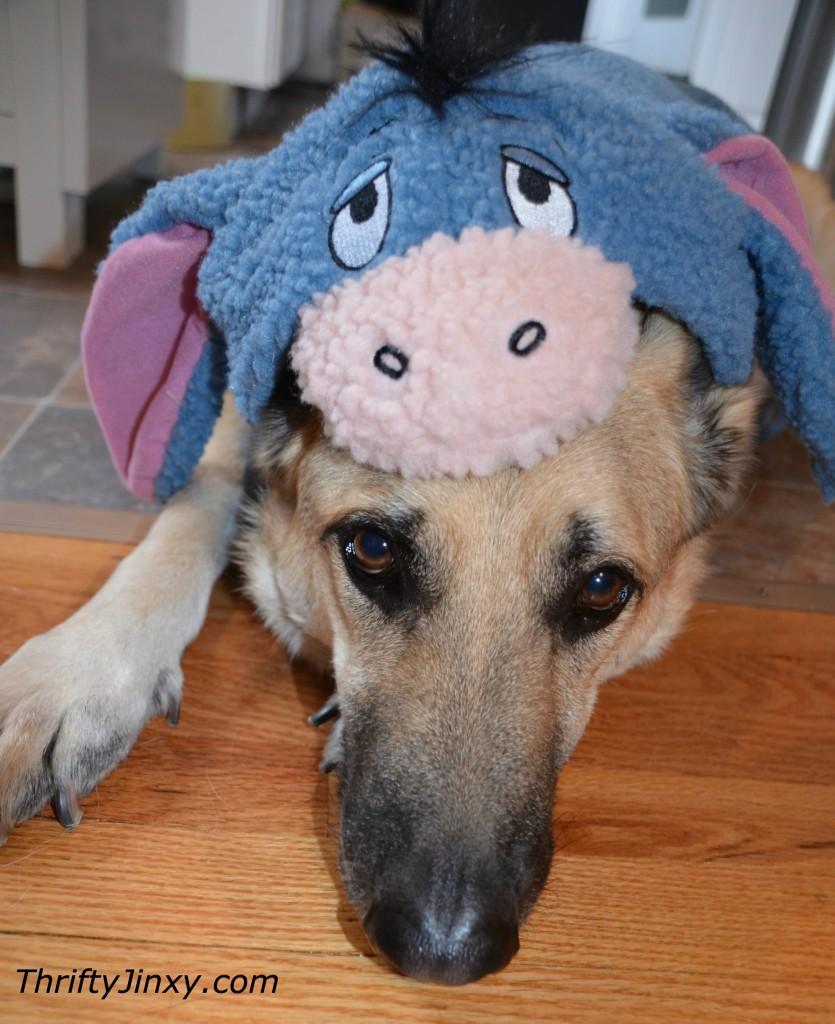 Disney Pet Eeyore Costume
