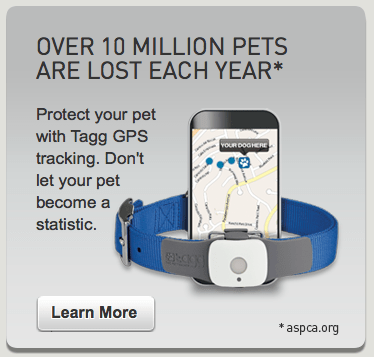 Tagg GPS Pet Tracker