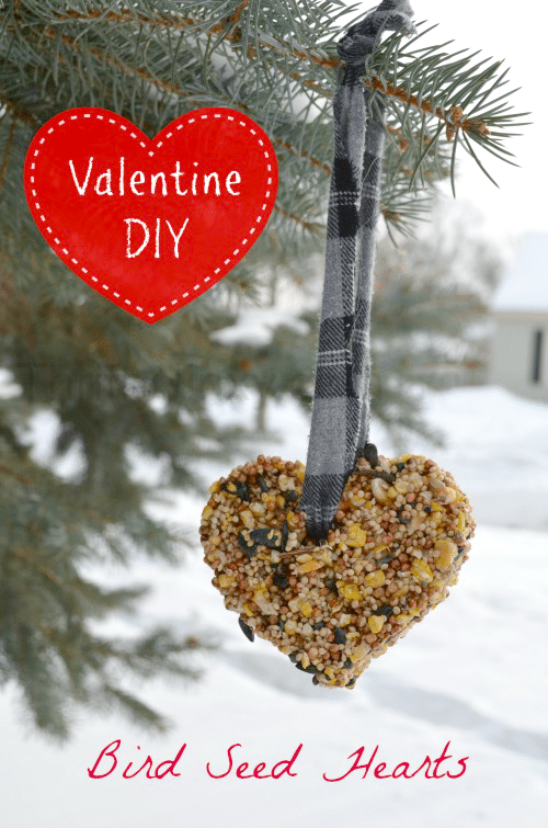 These Valentine Bird Feeder Hearts are an easy DIY way to share the holiday with your feathered friends! They are a perfect craft or Valentine's day or to treat the birds any time of year.