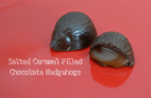Wild Ophelia Chocolate Hedgehogs