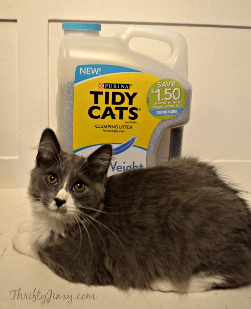 Tidy Cat LightWeight Litter