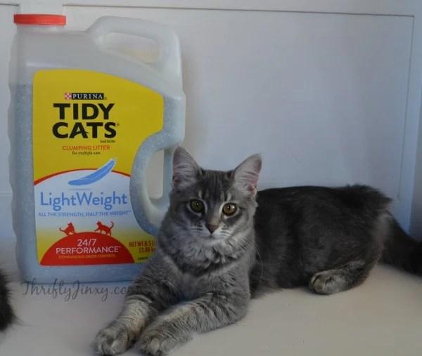 Cleo Tidy Cats LightWeight