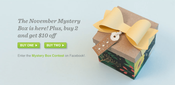 Cricut November Mystery Box