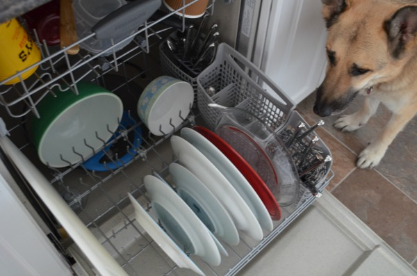 Dishwasher #CleanForTheHolidays