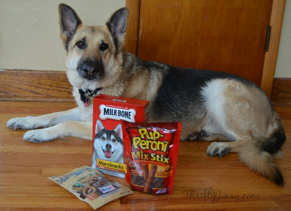 Big Heart Pet Treats #TreatThePups