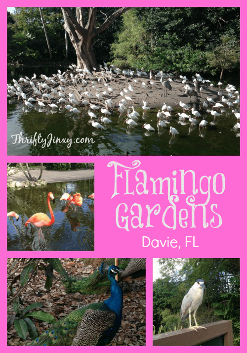 Flamingo Gardens Davie Florida