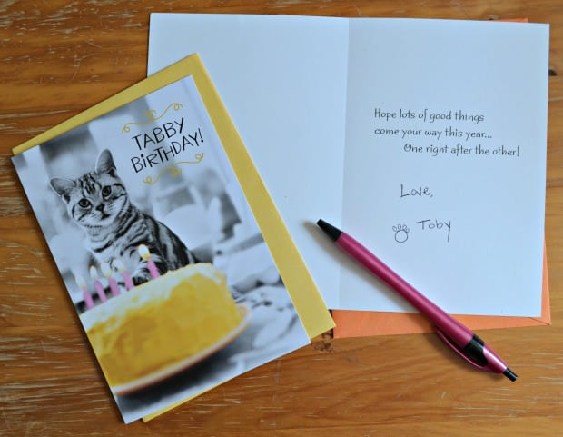 Hallmark Value Cards Cat