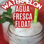 Watermelon Agua Fresca Float