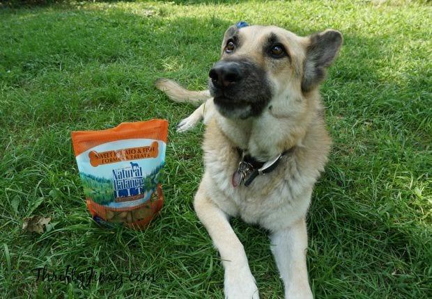 Natural Balance Limited Ingredient Treats PetSmart