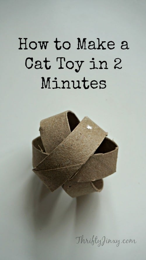 How to Make a Cat Toy in 2 Minutes