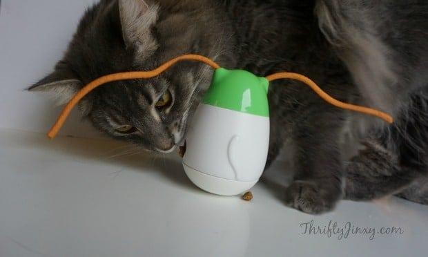 Wobbert Cat Toy