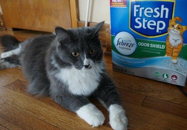 Fresh Step Odor Shield Febreze