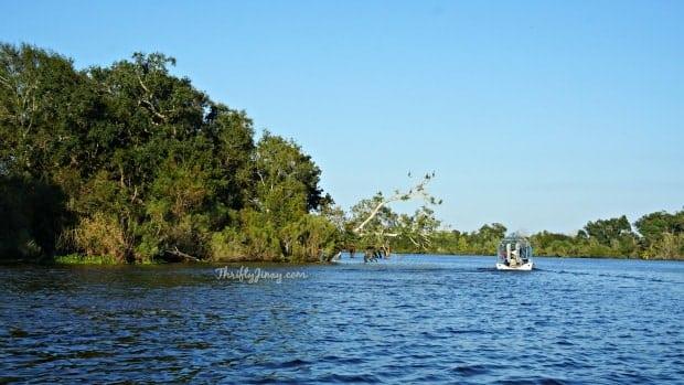 Louisiana Swamp Tours Airboat Tour