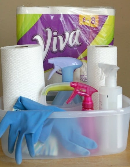 Spring Cleaning Viva Towels