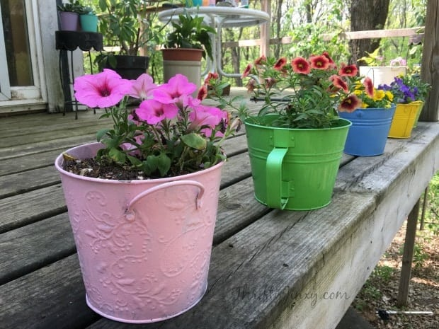Upcycled Painted Plant Pots