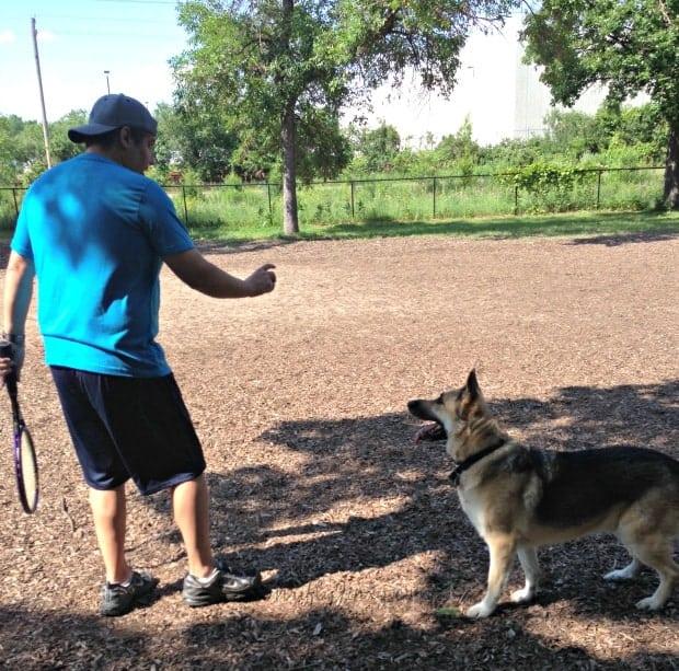 Toby Dog Park