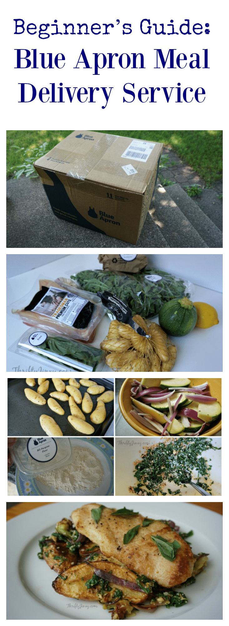 Beginner's Guide Blue Apron Meal Delivery Service