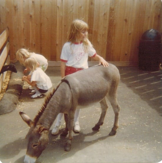 Valleyfair Donkey