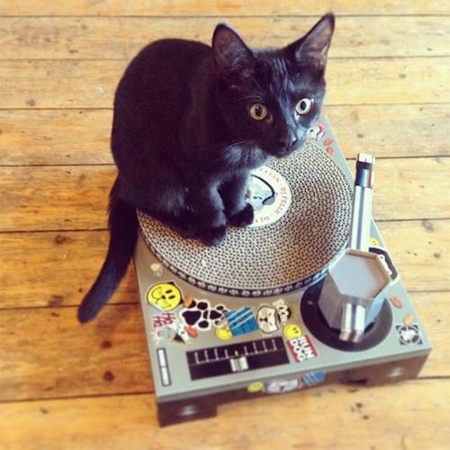 Cat Play House Scratch Mat