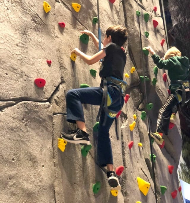 Great Wolf Climbing Wall