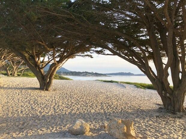 Carmel Beach Carmel-by-the-Sea