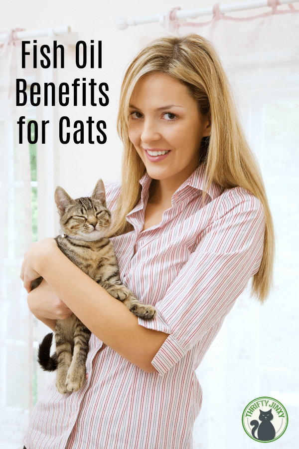 Fish Oil Benefits for Cats