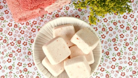 Homemade Essential Oils Dishwasher Tabs 2