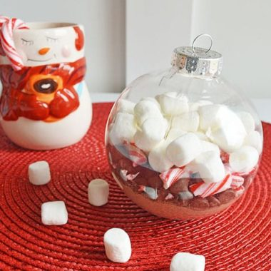 DIY Hot Chocolate Ornament