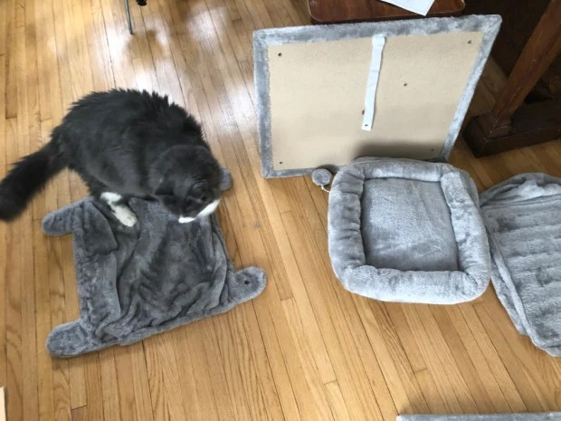Cat Tree Assembly