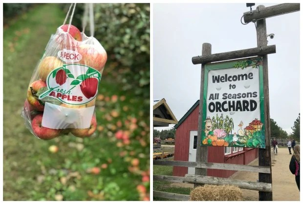 Woodstock IL All Seasons Orchard