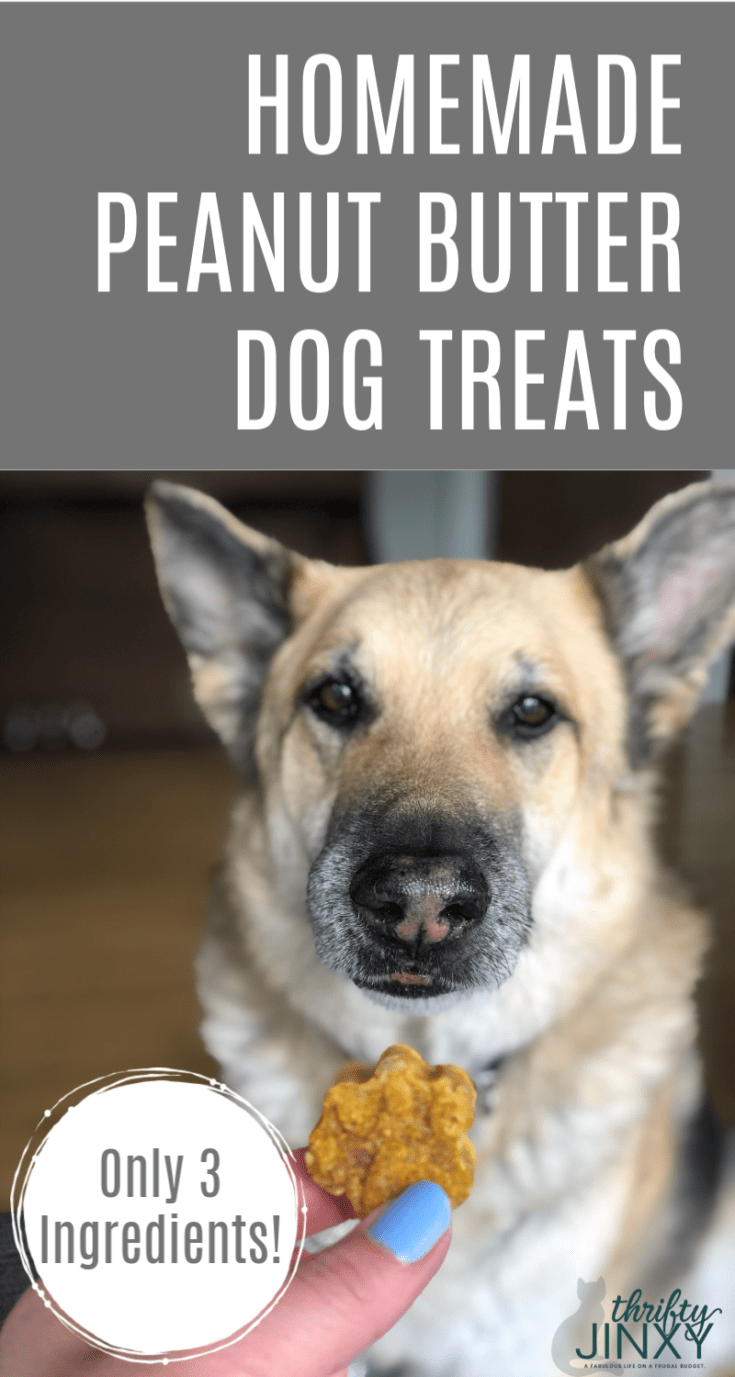 Only three simple ingredients are needed to make these homemade Peanut Butter Dog Treats your pet will love! #dogs #dogtreats
