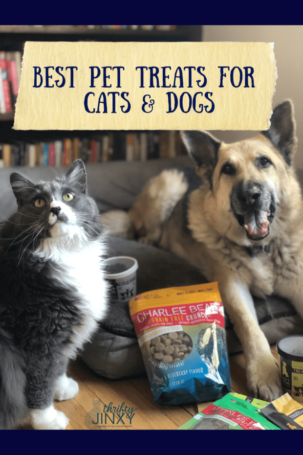 Best Pet Treats for Cats and Dogs