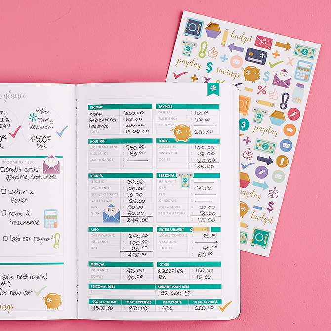 erin Condren Budget Book with Stickers