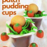 pumpkin patch pudding cups (1)
