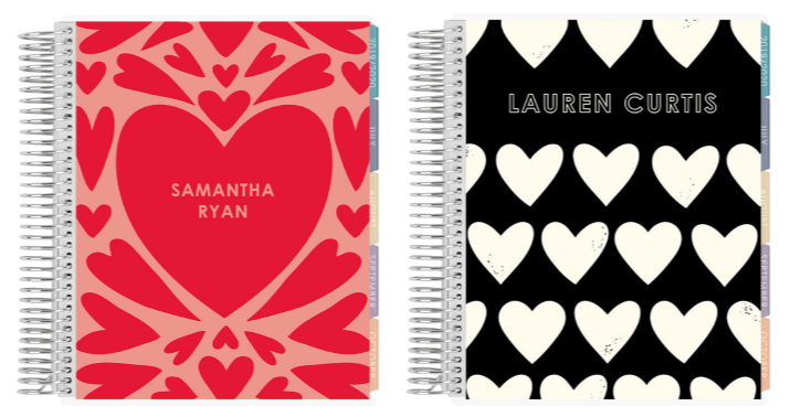 Erin Condren Heart LifePlanners