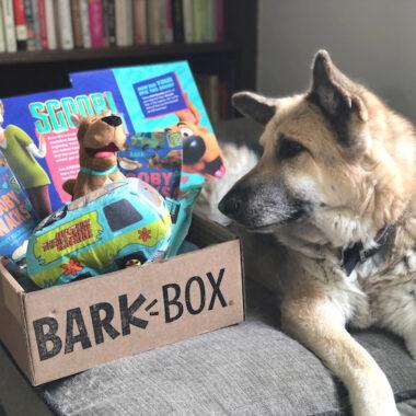 Scooby Doo BARK BOX