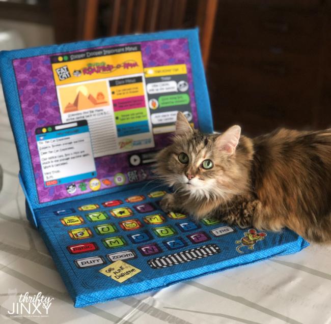 Lappy Toppy Cat Mat