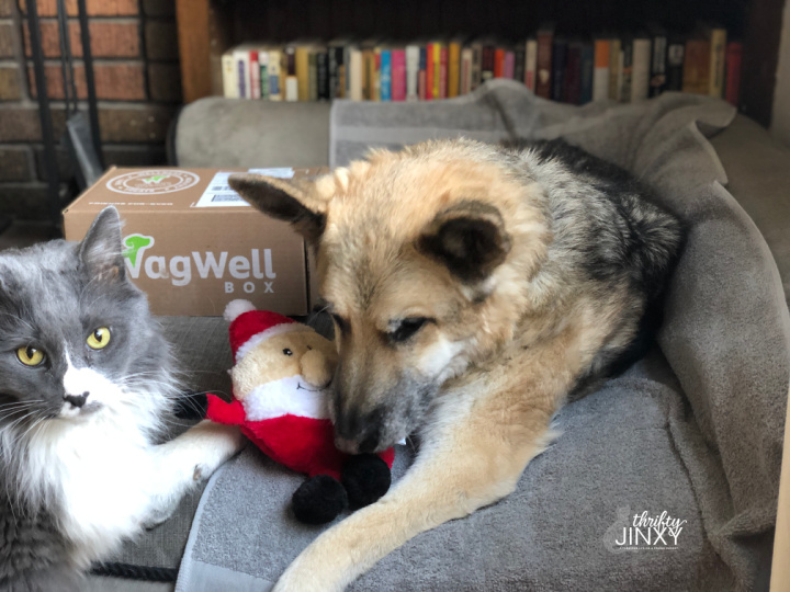 WagWell Subscription Box